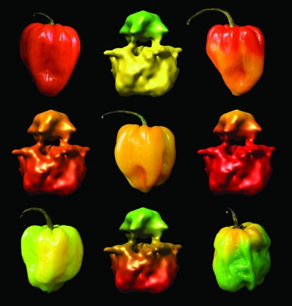 hot-chile-peppers.jpg